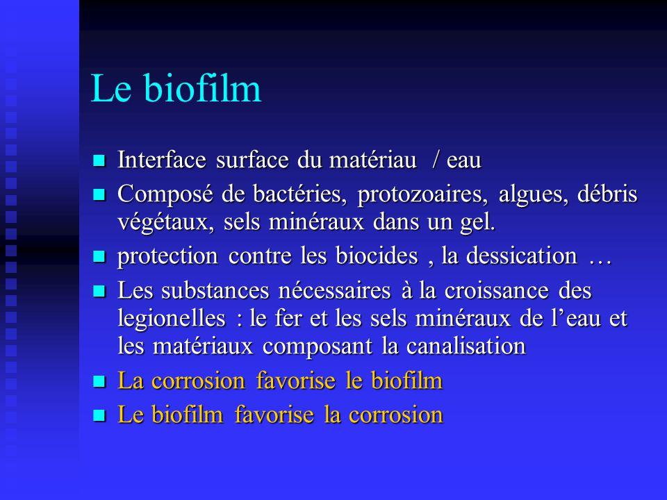 Le biofilm Interface surface du matériau / eau