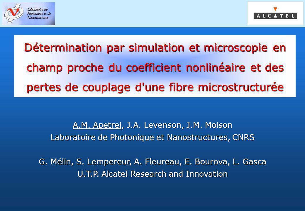 Détermination par simulation et microscopie en champ proche du coefficient nonlinéaire et des pertes de couplage d une fibre microstructurée