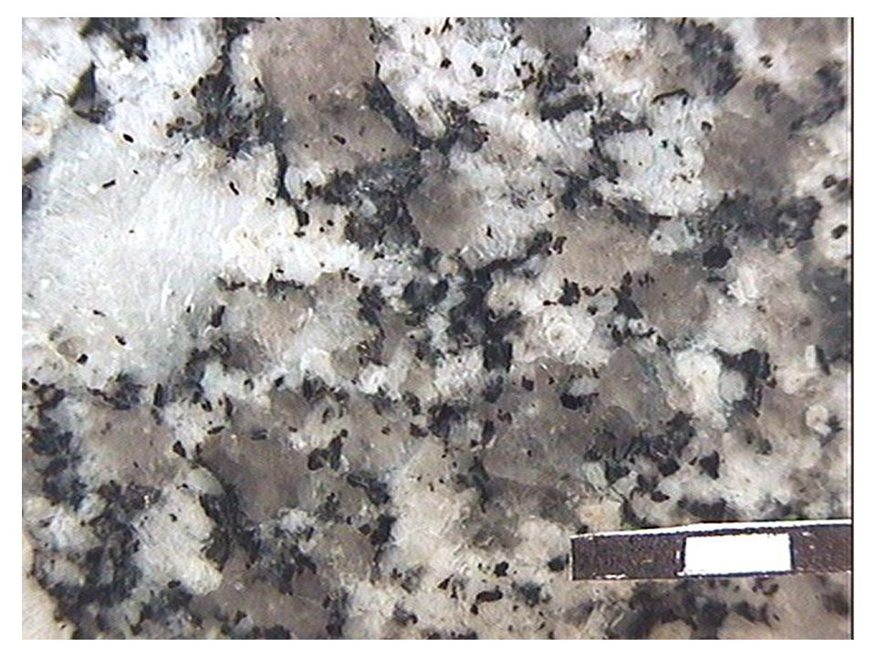 Monzogranite (loupe)