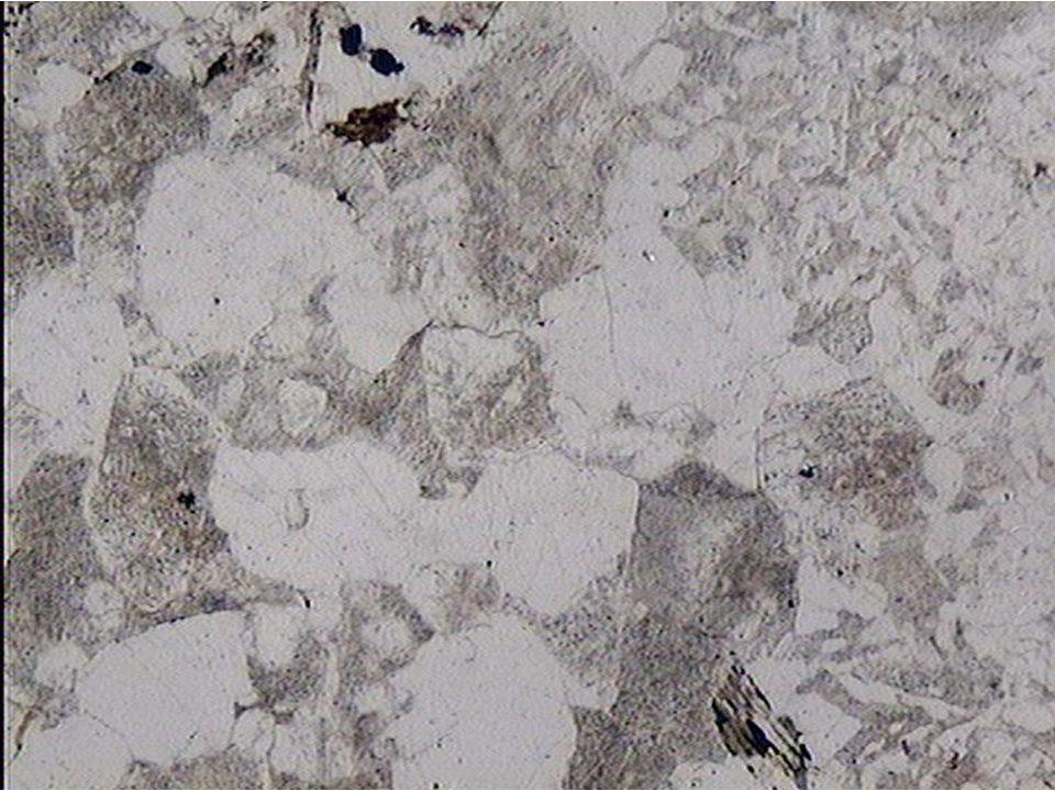 Texture formée de grains xénomorphes de petite taille LPNA