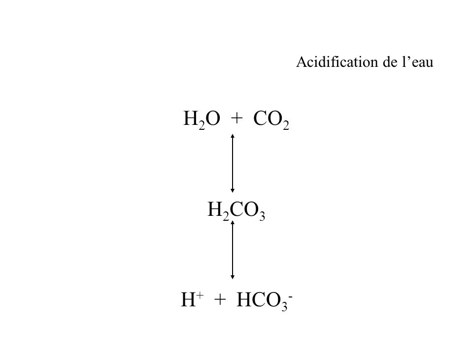 Acidification de l'eau