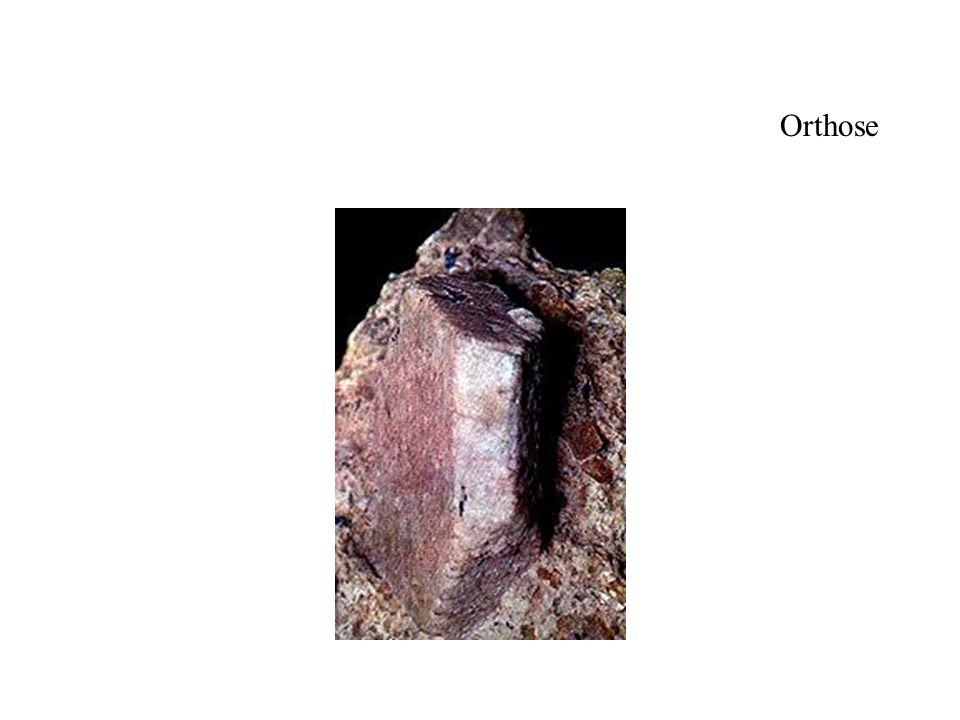 Orthose