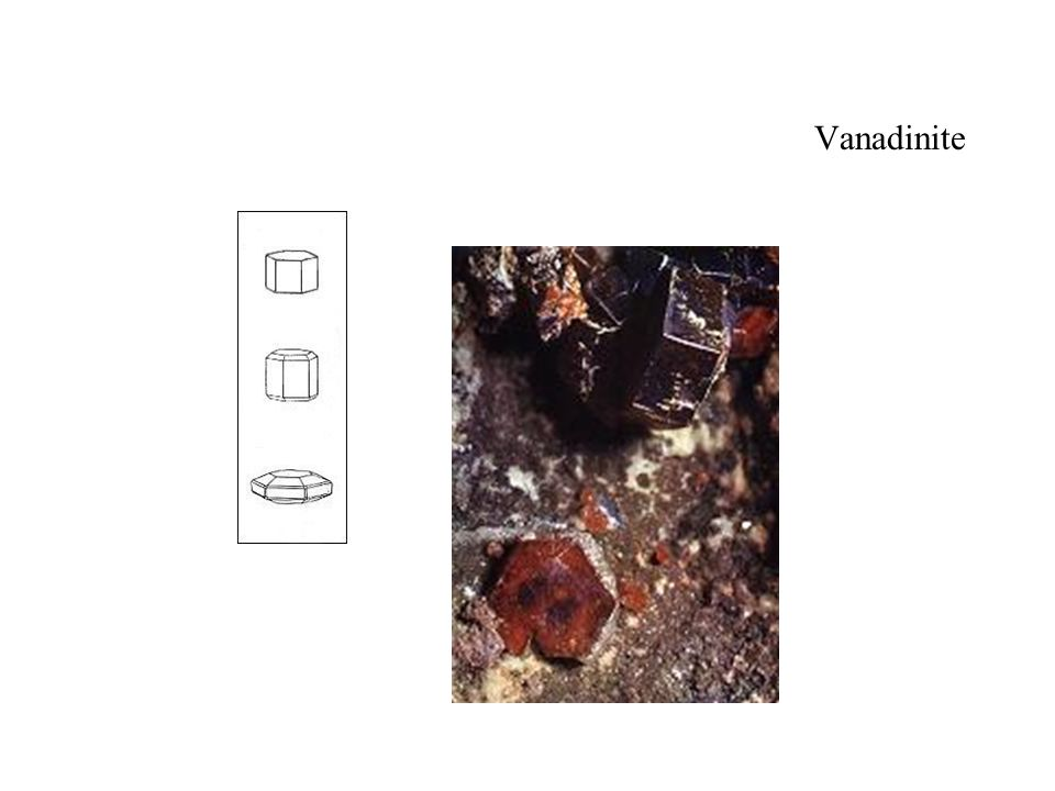 Vanadinite Dimension des cristaux 3 mm