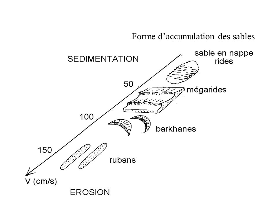 Forme d'accumulation des sables