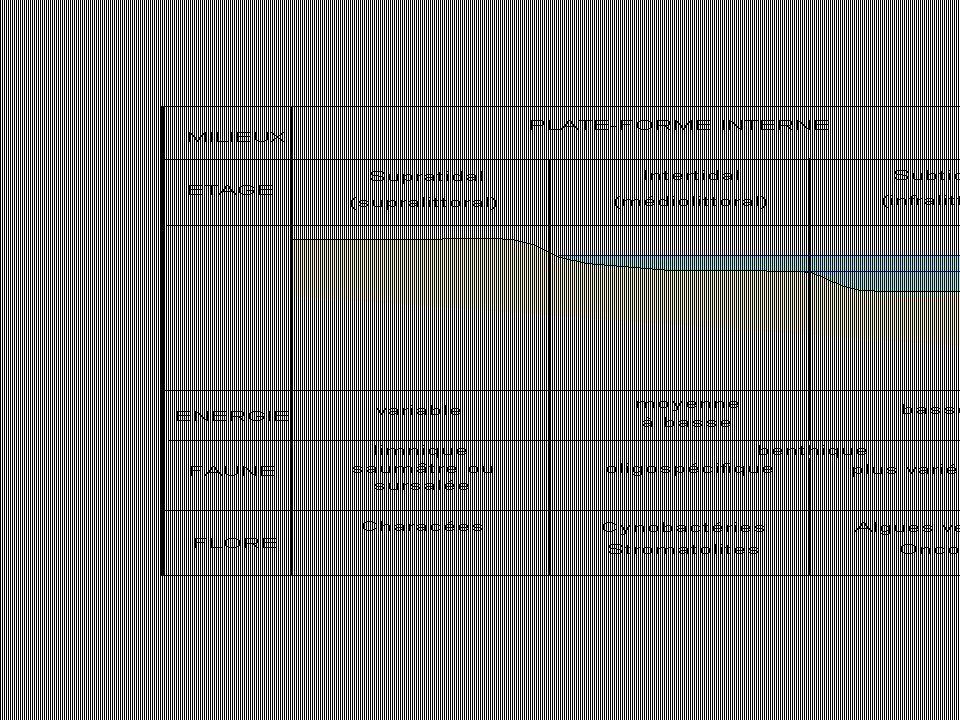Structure de la plate-forme littorale