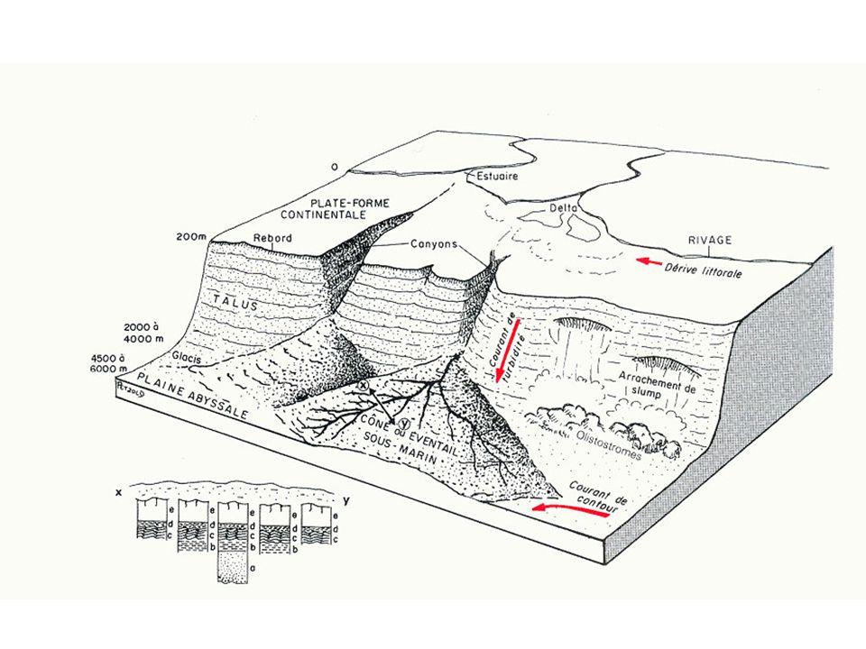 Structure du domaine turbiditique