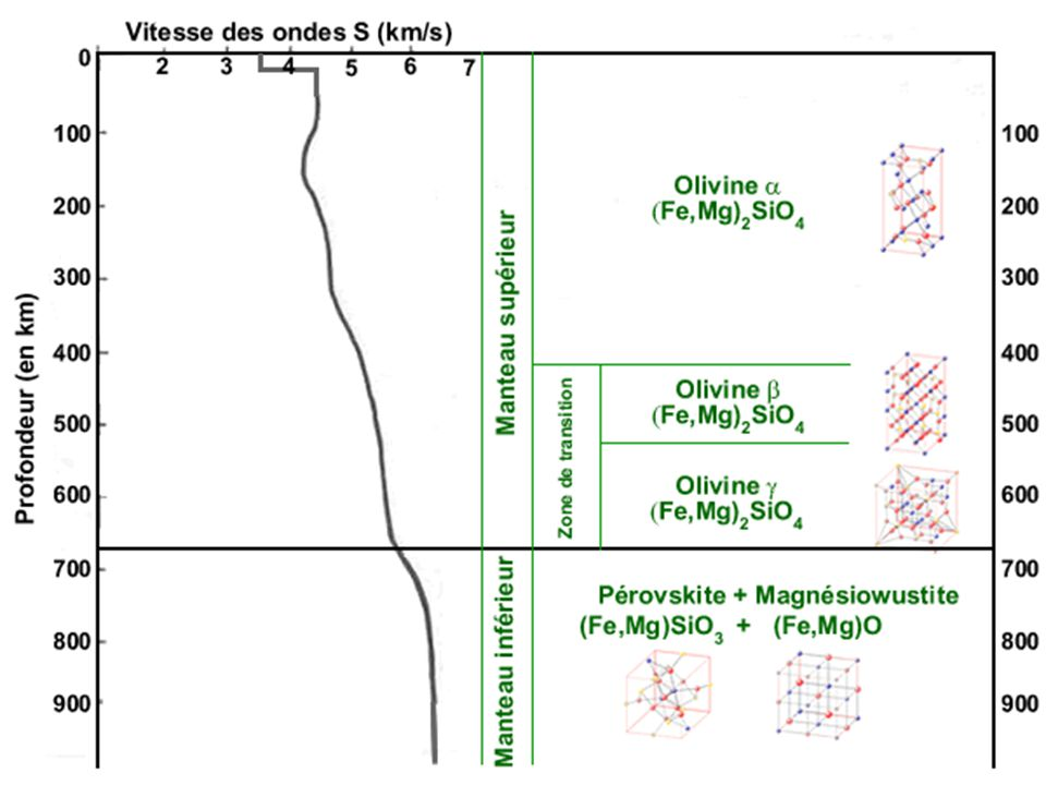 Transitions de phase de l'olivine