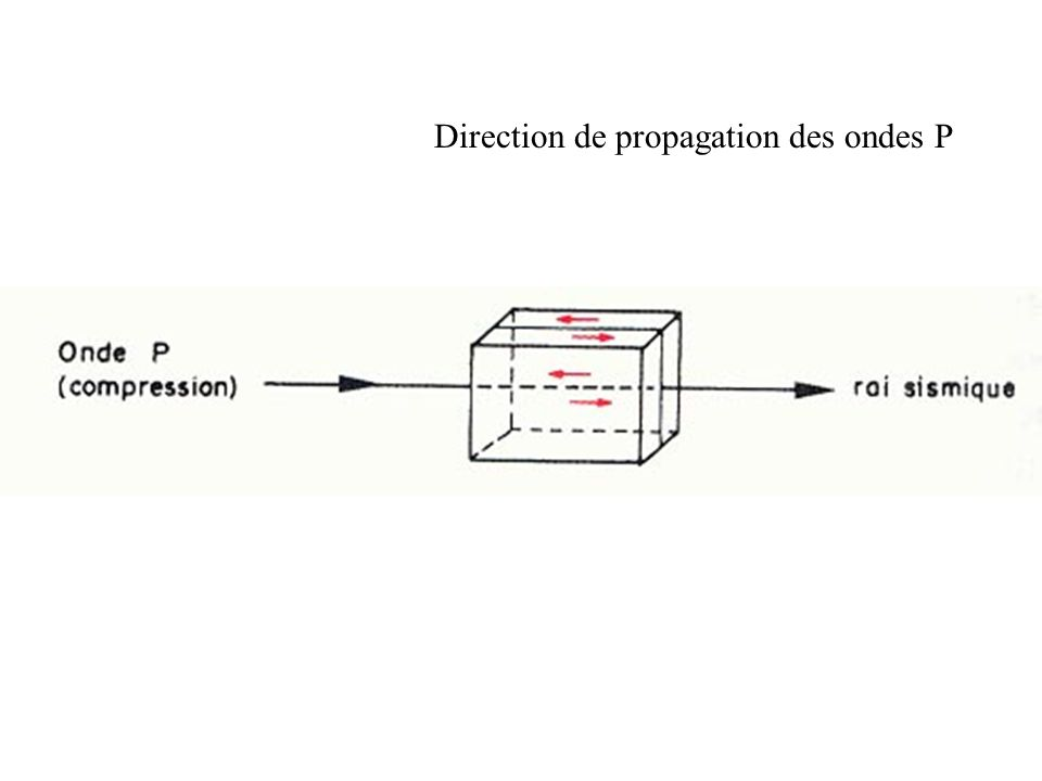 Direction de propagation des ondes P