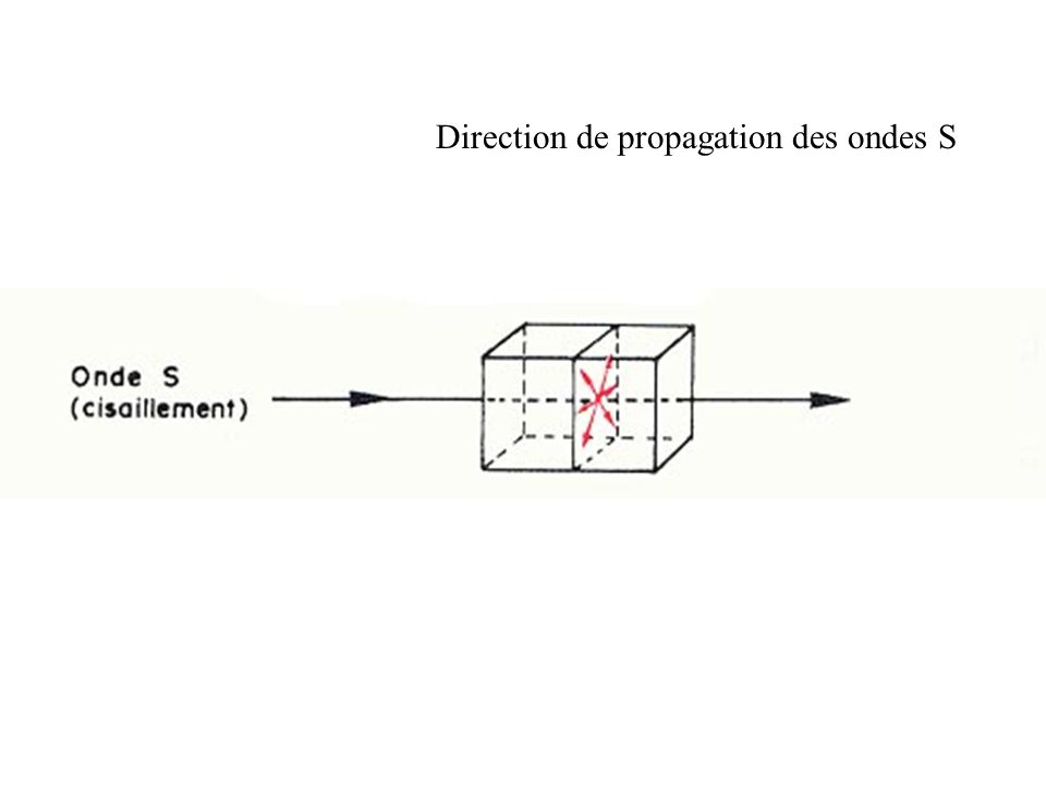 Direction de propagation des ondes S