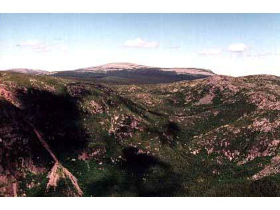 Mont Jacques-Cartier Intrusion granitique dévonienne aujourd hui dégagé en relief de plateaux aux versant escarpés(1268 m).