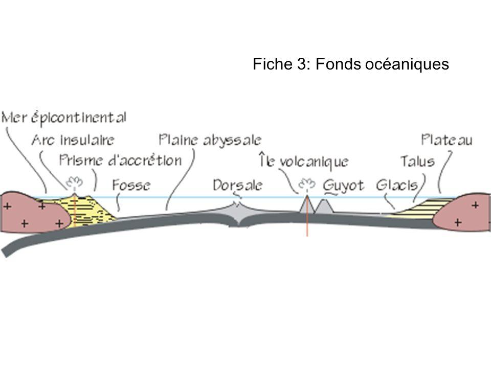 Fiche 3: Fonds océaniques