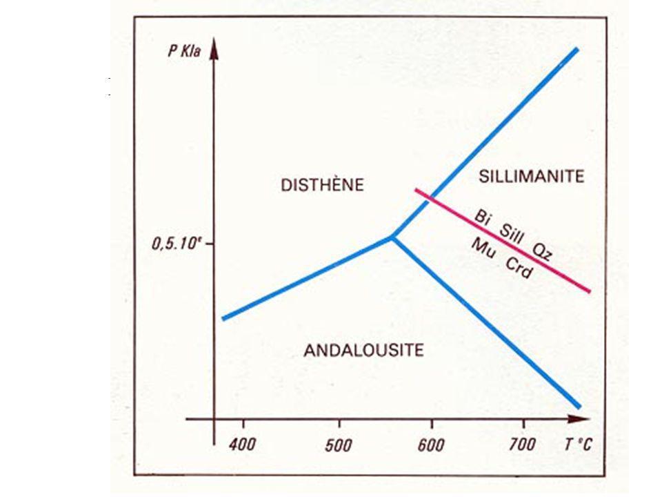 Exercice n° 3 : champs de stabilité des minéraux