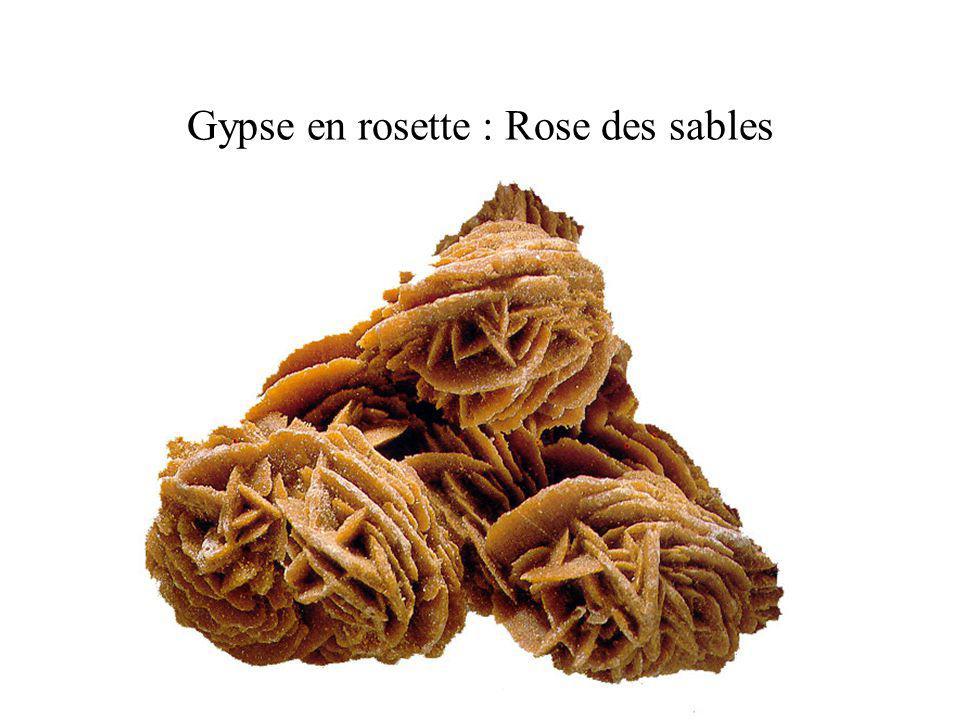 Gypse en rosette : Rose des sables
