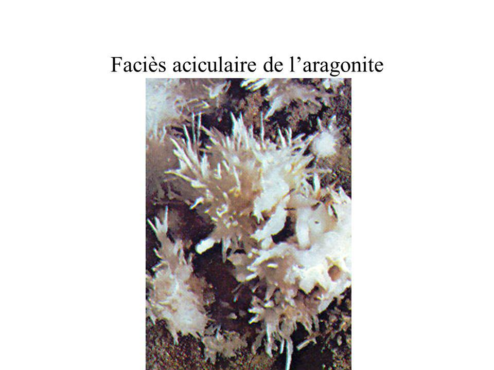 Faciès aciculaire de l'aragonite