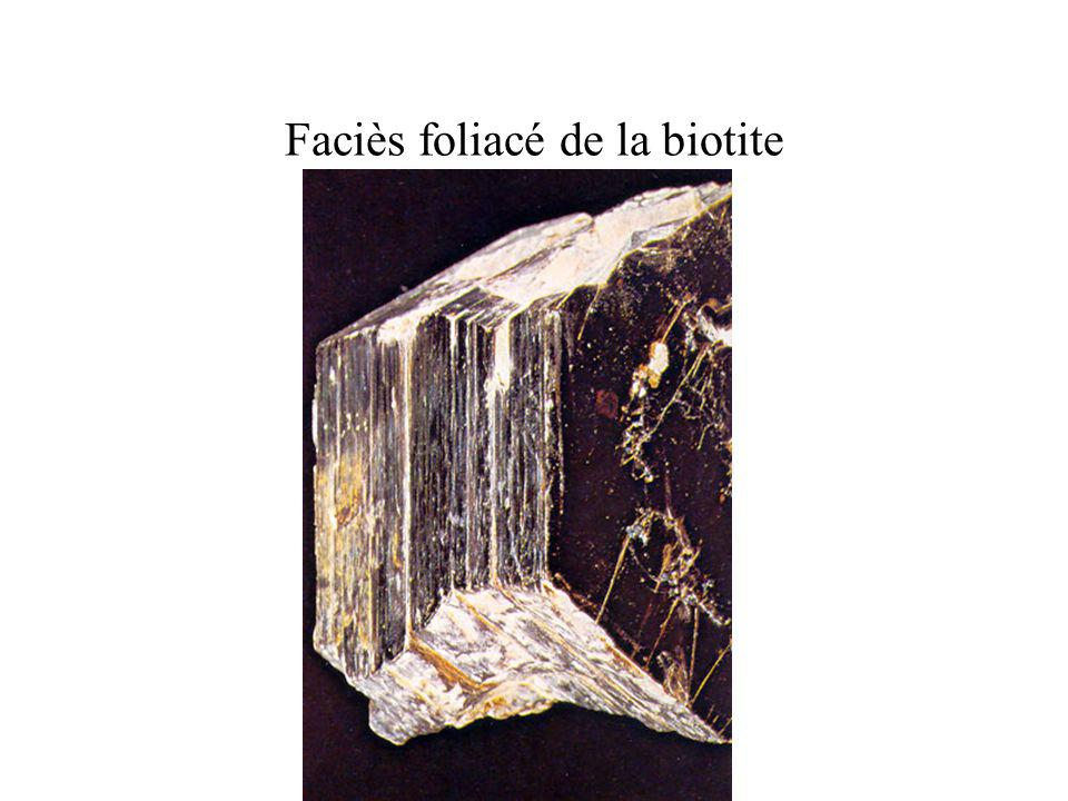 Faciès foliacé de la biotite