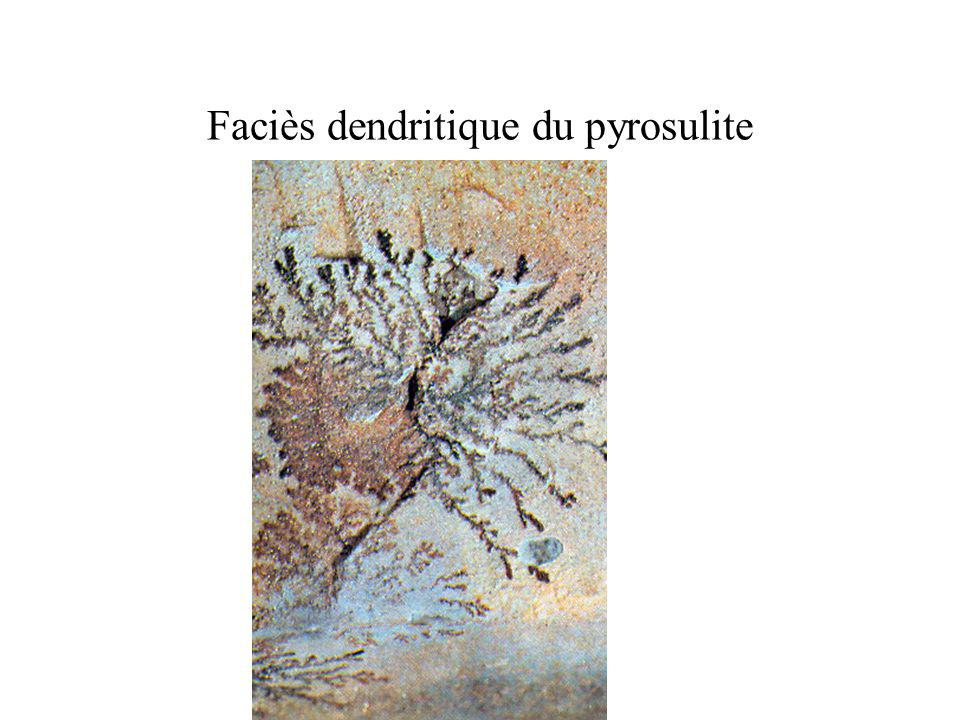 Faciès dendritique du pyrosulite