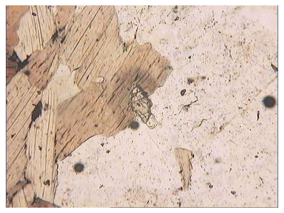Relief du zircon par rapport à la biotite