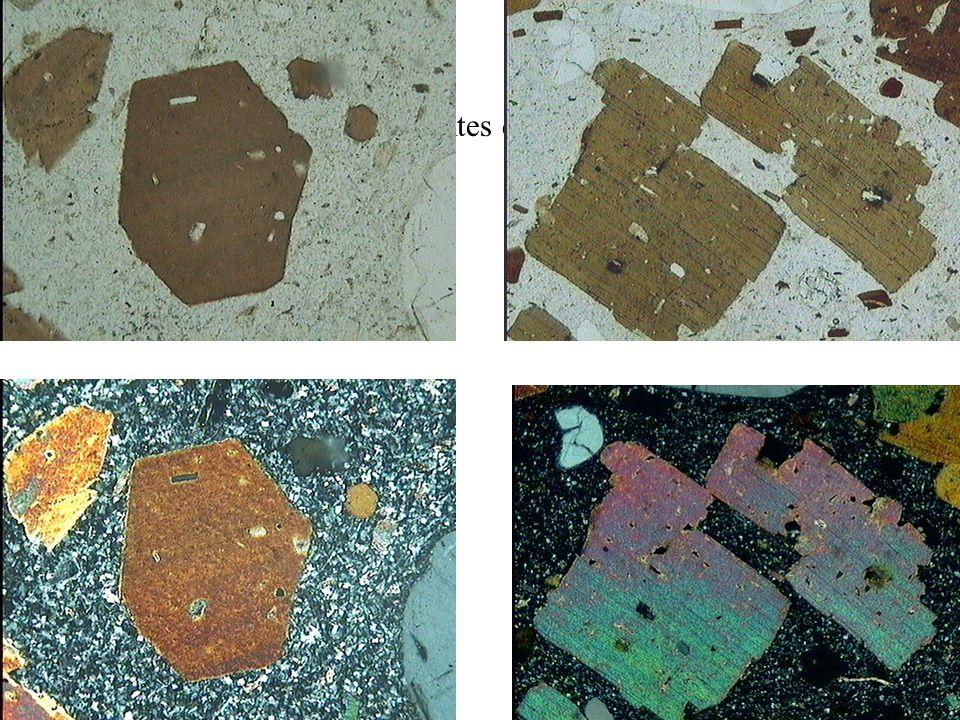 Teintes de la biotite selon les sections