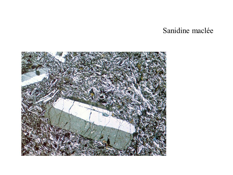 Sanidine maclée