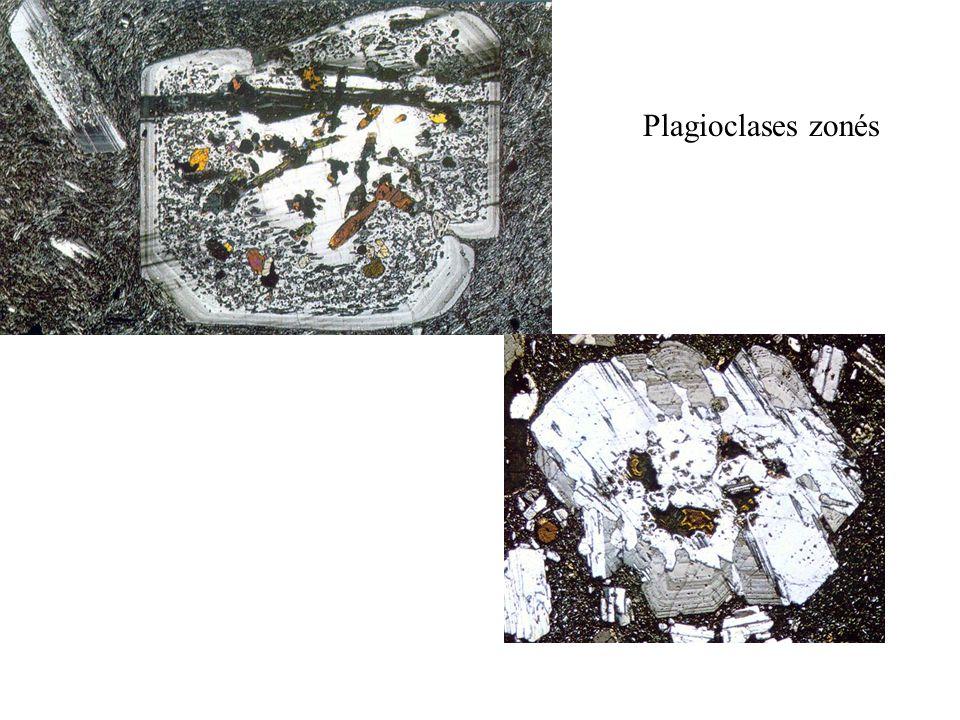 Plagioclases zonés