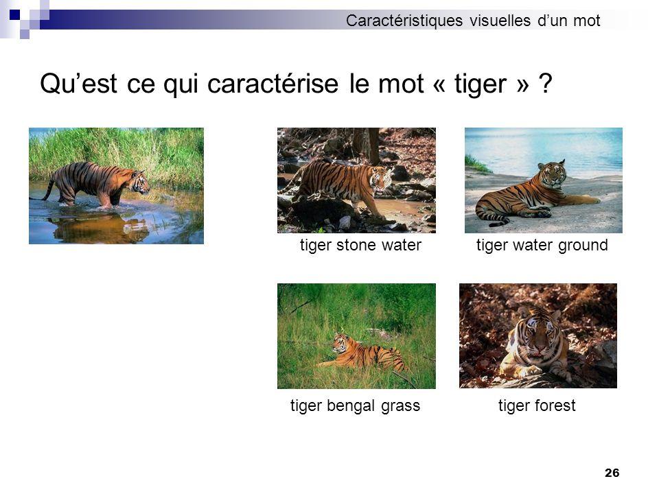 Qu'est ce qui caractérise le mot « tiger »