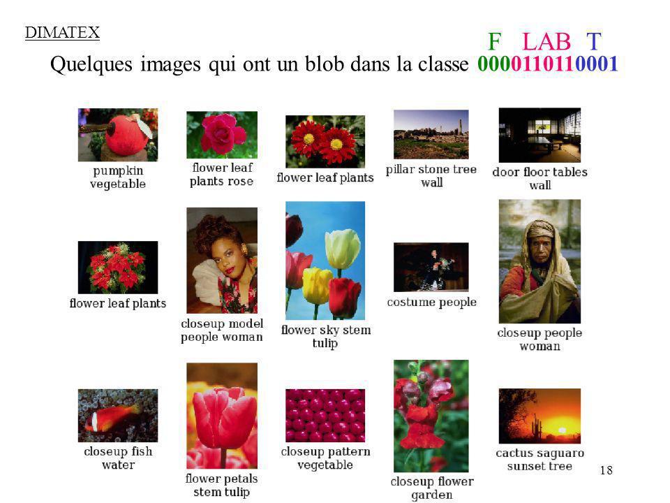 Quelques images qui ont un blob dans la classe 0000110110001
