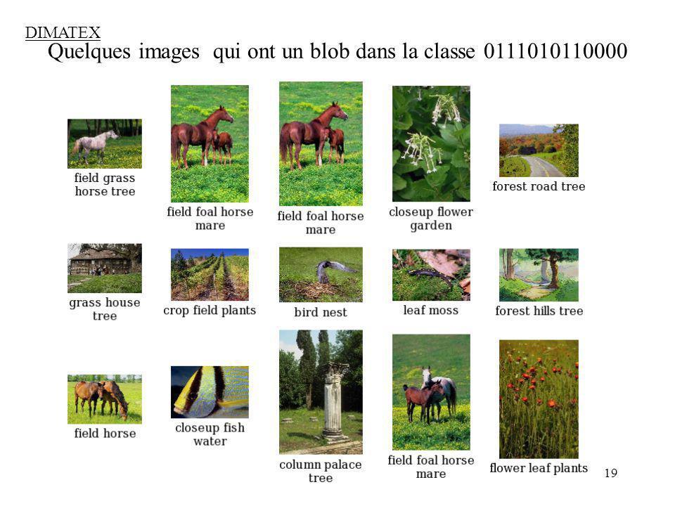 Quelques images qui ont un blob dans la classe 0111010110000