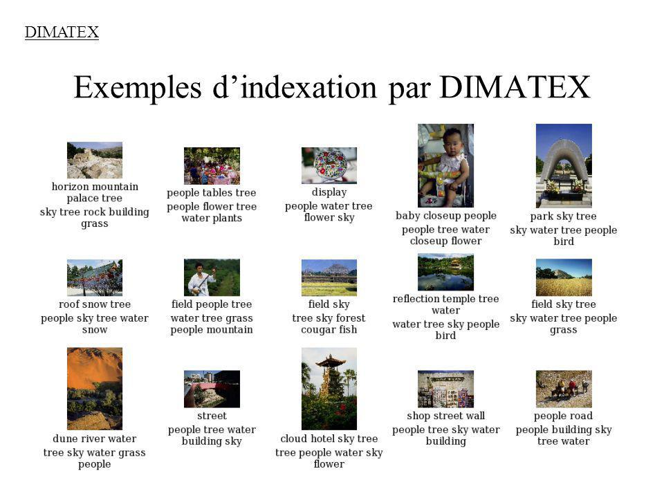 Exemples d'indexation par DIMATEX