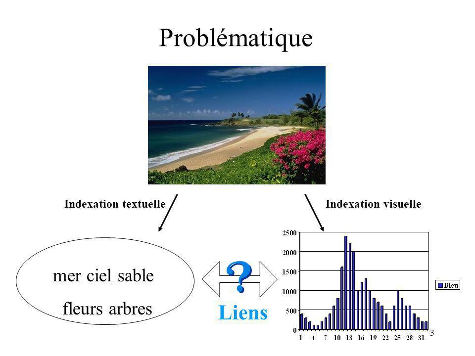 Problématique mer ciel sable fleurs arbres Liens Indexation textuelle