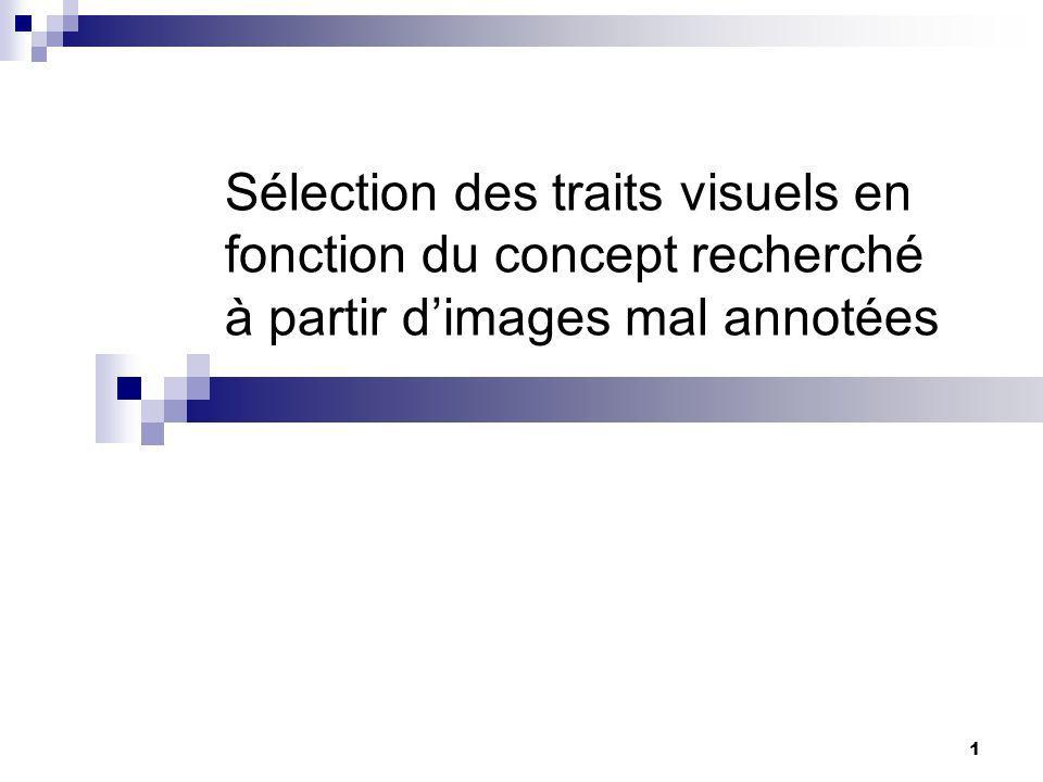 Sélection des traits visuels en fonction du concept recherché à partir d'images mal annotées