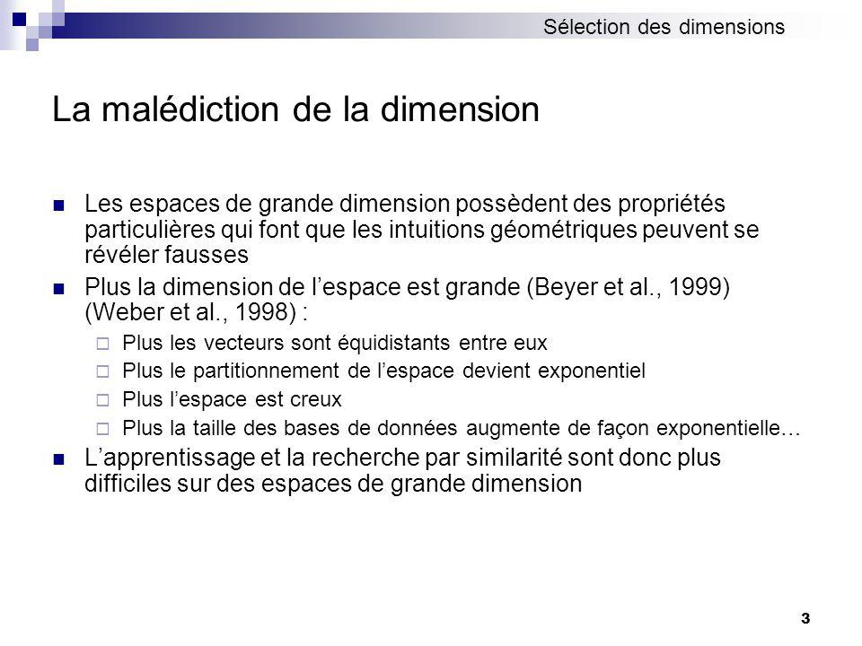 La malédiction de la dimension