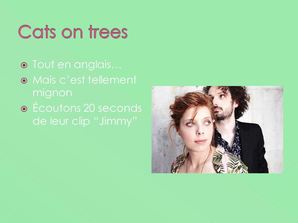 Cats on trees Tout en anglais… Mais c'est tellement mignon