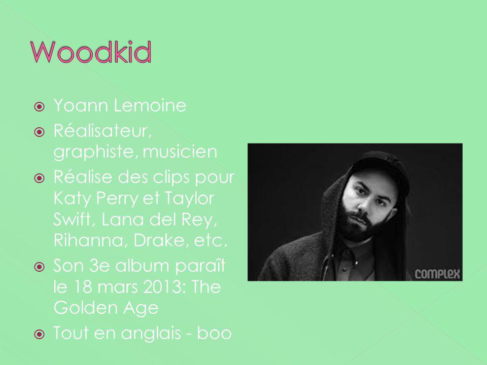 Woodkid Yoann Lemoine Réalisateur, graphiste, musicien