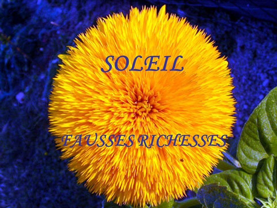 SOLEIL FAUSSES RICHESSES