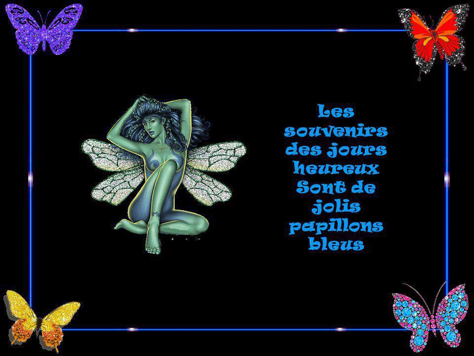 Sont de jolis papillons bleus