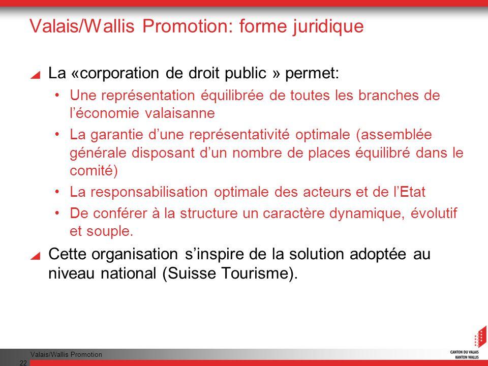 Valais/Wallis Promotion: forme juridique