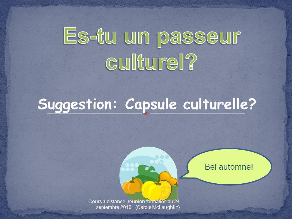 Es-tu un passeur culturel Suggestion: Capsule culturelle