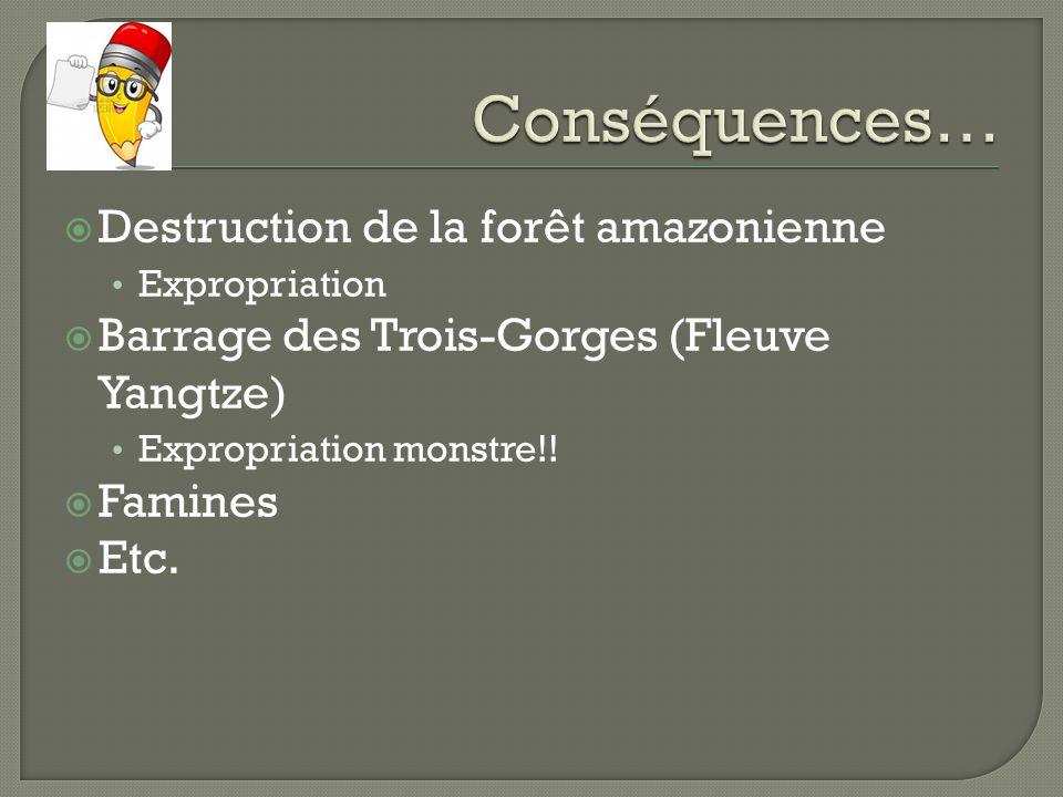 Conséquences… Destruction de la forêt amazonienne