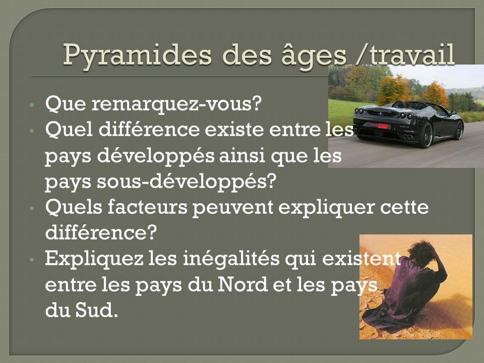 Pyramides des âges /travail