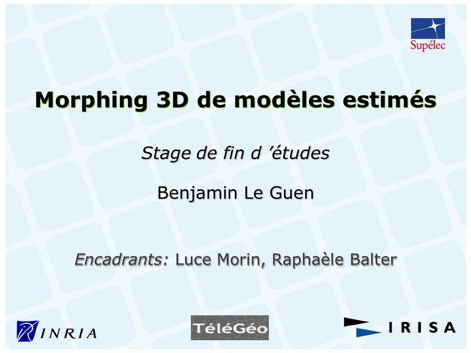 Morphing 3D de modèles estimés