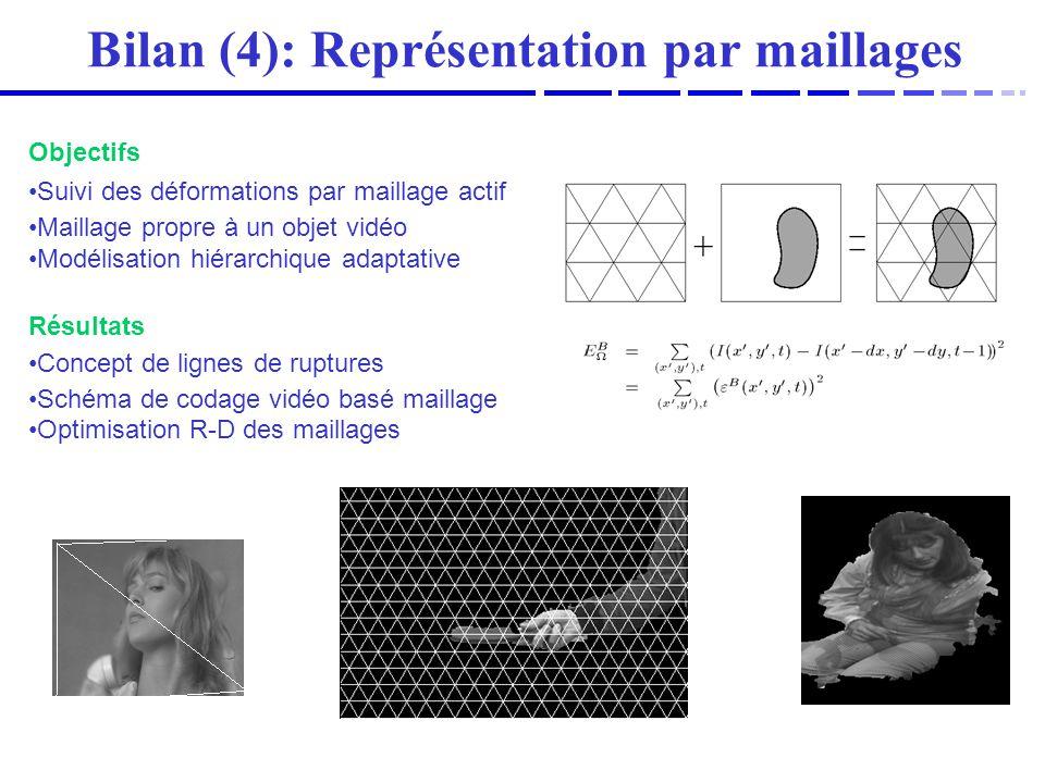Bilan (4): Représentation par maillages