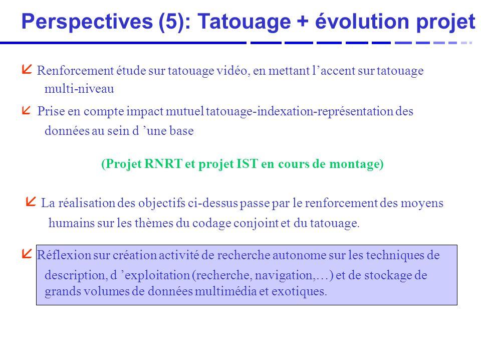 Perspectives (5): Tatouage + évolution projet