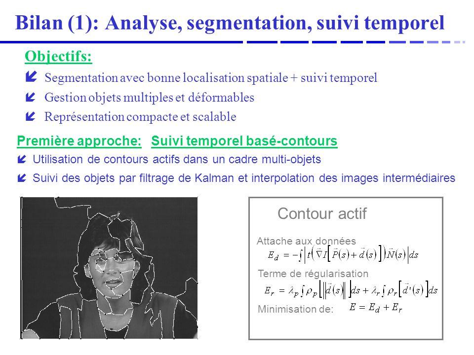 Bilan (1): Analyse, segmentation, suivi temporel