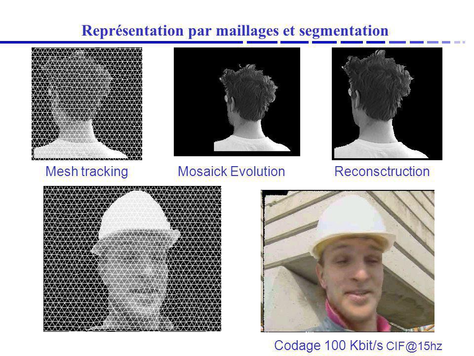 Représentation par maillages et segmentation