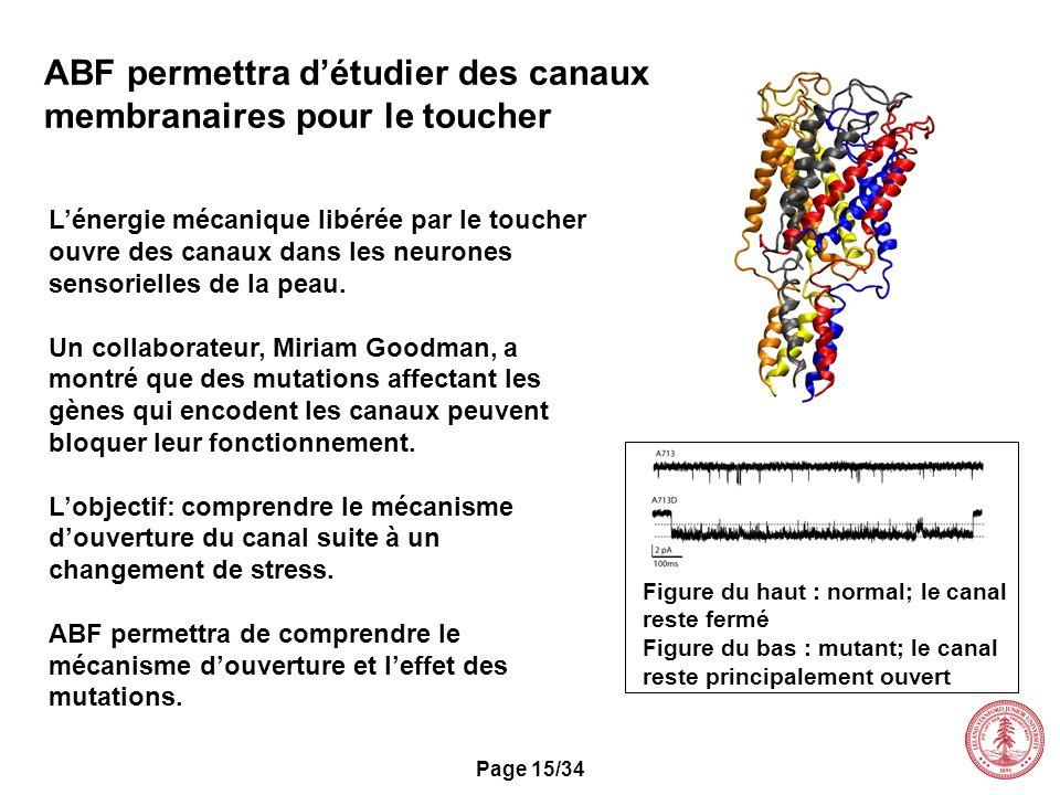 ABF permettra d'étudier des canaux membranaires pour le toucher