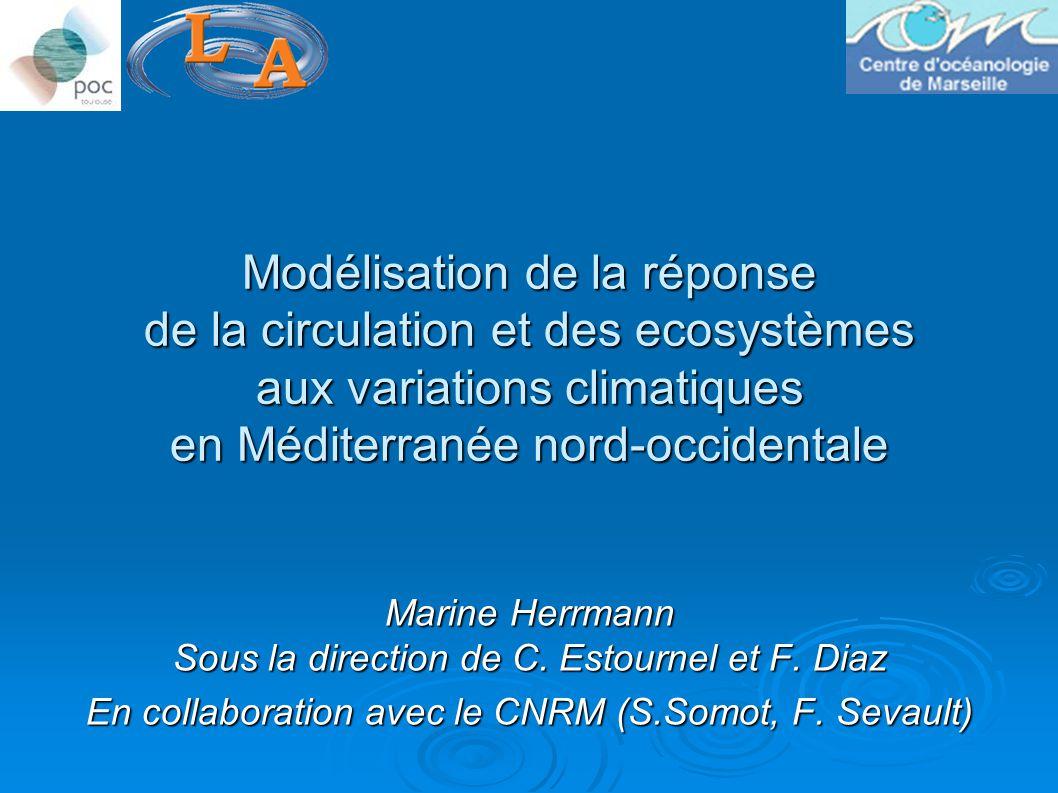 Modélisation de la réponse de la circulation et des ecosystèmes aux variations climatiques en Méditerranée nord-occidentale