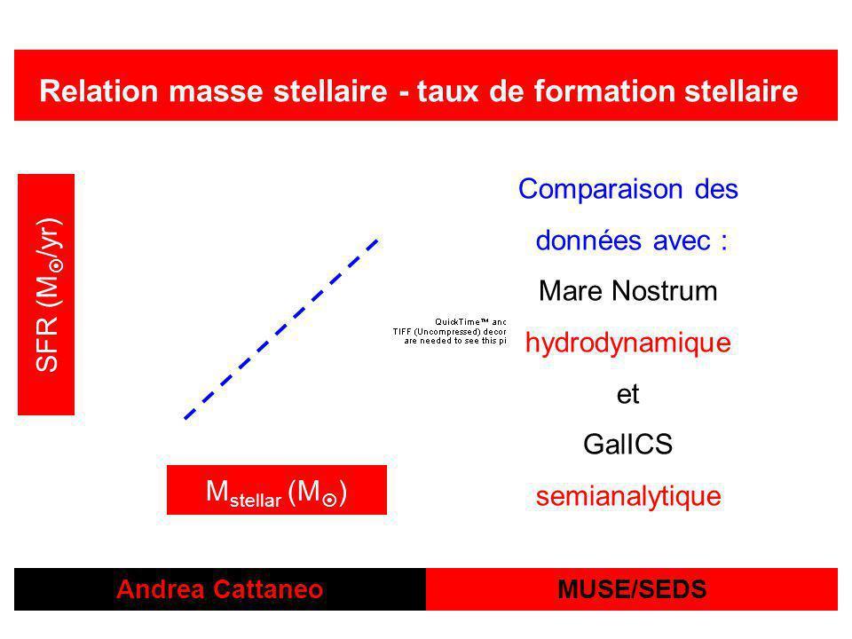 Relation masse stellaire - taux de formation stellaire