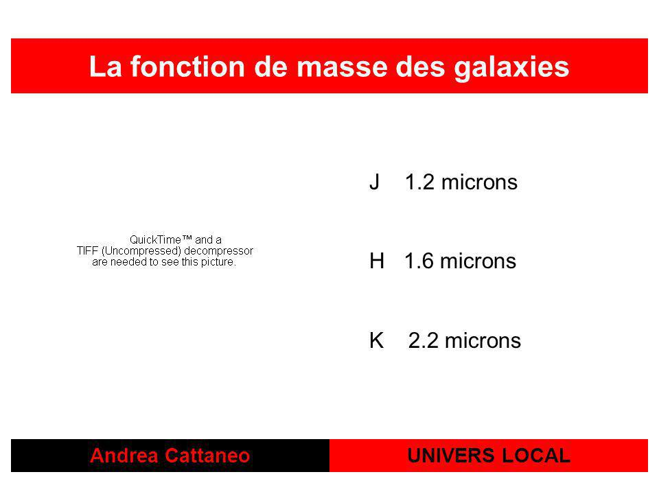 La fonction de masse des galaxies