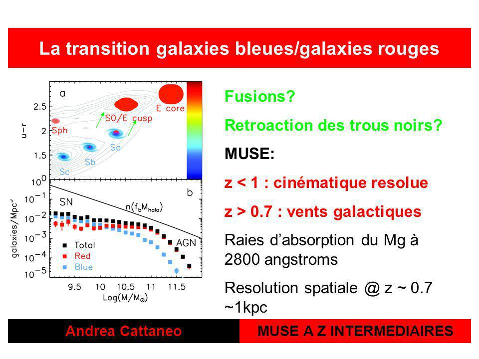 La transition galaxies bleues/galaxies rouges MUSE A Z INTERMEDIAIRES