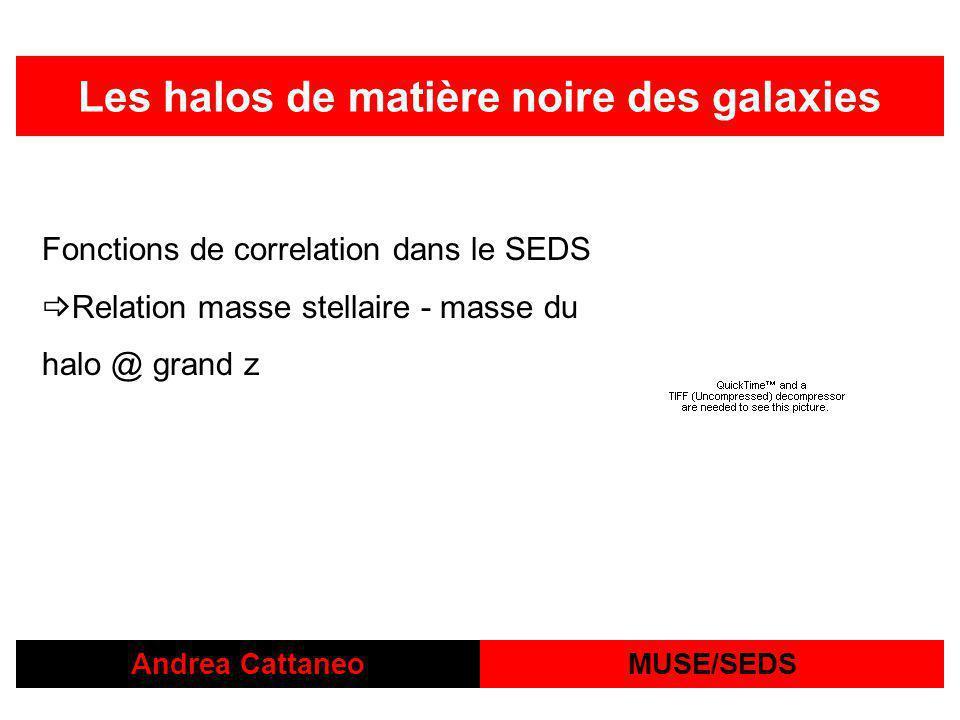 Les halos de matière noire des galaxies